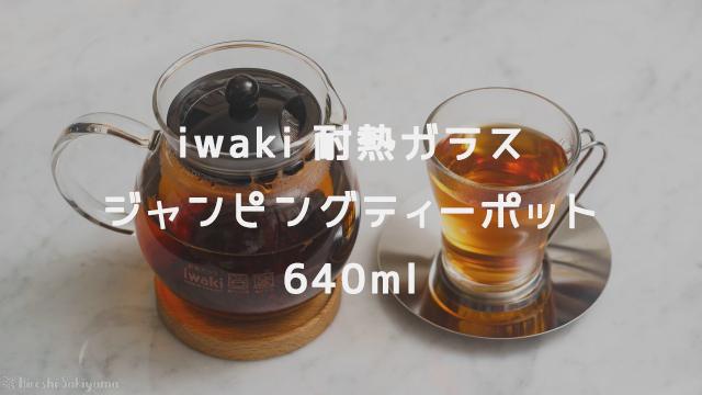 iwaki 耐熱ガラス ジャンピングティーポット K894T 640ml
