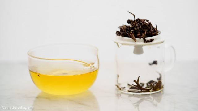 華剛茶業 テイスティング用ガラス製茶海セットでのテイスティング