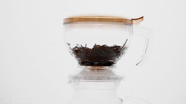 CASUAL PRODUCT パーフェクト C&T ブリューワー ラウンドに残った抽出完了した茶葉